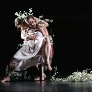 Tanz In Deutschland Gregor Zollig Dein Herz Ist Meine Heimat Ursula Kaufmann